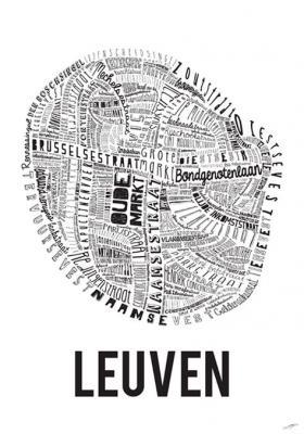 Website van het parkingplan te Leuven.